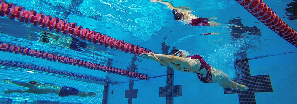 Woman Swimming in the Pool Lane