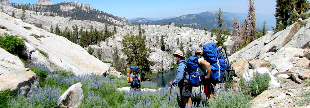 Sequoia National Park Camping & Hiking Exploration